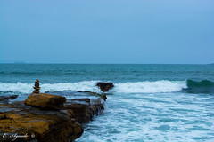 Pacific Ocean (E. Aguedo) Tags: ocean pacific peru paracas ica water winter nature ngc waves sea rocks tranquil scene motion