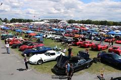 Corvettes_at_ Carlisle_20190824_0089