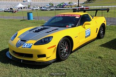 Corvettes_at_ Carlisle_20190824_0019