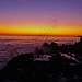 Contemplating Waves and Sunsets - Laguna Beach