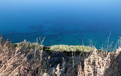 Blue (raffaele pagani (away for a while)) Tags: alghero provinciadisassari provinceofsassari sardegna sardinia marmediterraneo mediterraneansea isola island italia italy
