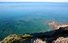 Green - Blue (raffaele pagani (away for a while)) Tags: alghero provinciadisassari provinceofsassari sardegna sardinia marmediterraneo mediterraneansea isola island italia italy