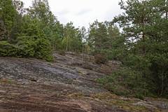 _DSC4818_DxO (Alexandre Dolique) Tags: scandinavie août 2019 sandinavie d850 nikon afs 28300 f3556g ed vr suède sweden sverije tanum