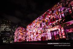 White Night Melbourne (Naomi Rahim (thanks for 5 million visits)) Tags: whitenightmelbourne melbourne victoria australia 2019 night arts event culture travelphotography travel nikon nikond750 1424mm treasurygardens