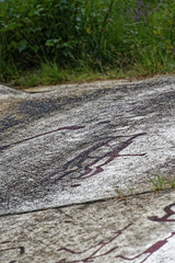 _DSC4813_DxO (Alexandre Dolique) Tags: scandinavie août 2019 sandinavie d850 nikon afs 28300 f3556g ed vr suède sweden sverije tanum