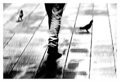 """Figures Libres à Barcelone 80"" (TBWLC Photography) Tags: fdrouet nb bw monochrome monochrom tbwlc motion rue street barcelona nikon d610"