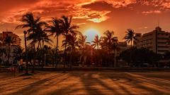 Sunset Miami Beach (mysterious-man) Tags: florida|pier|usaosten|daytonabeach|daytonabeach florida miami beach usa ostküste sunset menschen sand strand gegenlicht sonne sun palmen