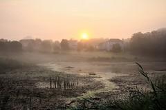 The beginning of a new day (Yuki (8-ballmabelleamie)) Tags: morning daybreak sunrise fog mist sunday swamp wetland marsh suburb subdivision cinematic dramatic picturesque