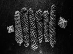 Piper longum & fleur de sel (Uup115) Tags: pitkäpippuri bokeh fleurdesel goestogetherlike saltandpepper longpepper pepper canon macromondays blackwhite closeup salt suolankukka bw hmm piperlongum canonpowershotgx5 macro