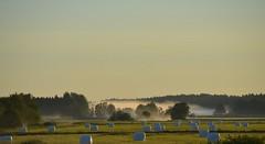 Tidig morgon i Gimo. (johnerlandaxelsson@gmail.com) Tags: gimo uppland sverige morgon natur landskap johnaxelsson omanipulerad