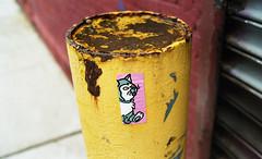 Plymouth Street (neilsonabeel) Tags: nikonfm2 nikon nikkor film analogue sticker cat brooklyn newyorkcity city