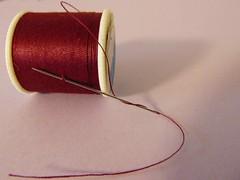 Needle and Thread...HMM (novice09) Tags: macromondays goestogetherlike needle thread