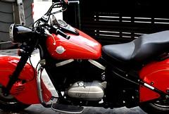 Kawasaki (thomasgorman1) Tags: drifter cruiser red motorcycle kawasaki nikon street streetshots city streetphotos vulcan 800 sportsbike retro