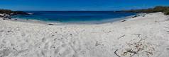 Playa perfecta (dcdc887) Tags: ecuador galapagos naturaleza nature beach playa mar sea ocean oceano arena sand horizonte horizon panoramic panorámica