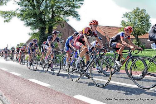 Omloop der Vlaamse gewesten 2019 (411)