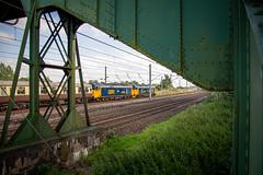 238/365 (Charlie Little) Tags: p365 project365 railways train locomotive carlisle cumbria nikon d7200 tamron18400mm class50 railtours