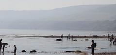 Robin Hood's Bay, (26-08-19) North Yorkshire, England, UK (CT Photography (UK)) Tags: robinhoodsbay eastcoast east coast northyorkshire england uk fishingvillage fishing village northyorkmoorsnationalpark nationalpark fylingdales whitbystrand smuggling