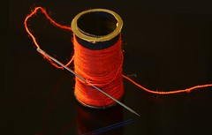 Needle and Thread (SophsPixs) Tags: needleandthread thread needle goestogetherlike macromondays