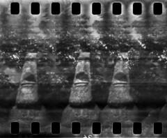 2408 Heady. (Monobod 1) Tags: ondu 135 panoramic expired ilford hp5 rodinal pinhole lensless epsonv800