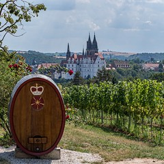 Meissen, the city of wine | IMGP6461-5 (horschte68) Tags: vineyard weinberg wine cask weinfas albrechtsburg castle meissen cathedral albrechtsburgcastleandmeissencathedral nature landscape landschaft pointofview composition bildaufbau blickwinkel pentaxkp pentaxsmcda50mmf18