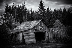 1888 (D E Pabst Photography) Tags: neglected abandoned blackandwhite decay wooden old ruraldecay graysharbor bw washington barn monochrome