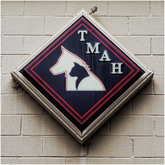 Terrell Mill Animal Hospital sign | Powers Ferry Road | Marietta, GA (steveartist) Tags: sign businesssign tmah terrellmillanimalhospital dog cat diamondshape blackandred backlitsigns sonydmcwx220 snapseed photostevefrenkel