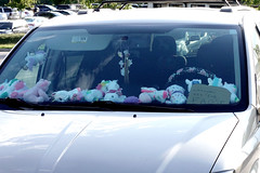 Parking Lot, Stuff Etc Coralville 8-17-19 01 (anothertom) Tags: coralvilleiowa parkinglot stuffetcstore unicorn unicornsareforfags quirky dashboard funny note carwindow plushies littleplushtoys cute 2019 sonyrx100v