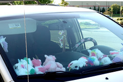 Parking Lot, Stuff Etc Coralville 8-17-19 02 (anothertom) Tags: coralvilleiowa parkinglot stuffetcstore unicorn unicornsareforfags quirky dashboard funny note carwindow plushies littleplushtoys cute 2019 sonyrx100v