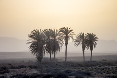 Sunset - Fuerteventura (Piotr Kowalski) Tags: fuerteventura canarias canaryislands island spain espania travel photography travelism journey holiday trip hiszpania wakacje wyspykanaryjskie lato summer beautiful sunset