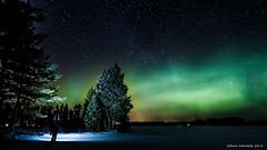Aurora borealis (goforphoto) Tags: nature winter aurora borealis night stars sweden sky snow trees