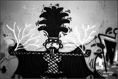 tagsMaurice Sève   25 08 2019 (3) (Bokey Shutter) Tags: fujicager ilfordpanf noirblanc lyon croixrousse