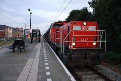 Trein 62072 (lex_081) Tags: 20190806 ns cargo dbc 6400 6437 station waddinxveen electrolux alphen aan den rijn rnet net 2013 arie trein 62072