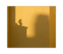 shadow play on a yellow wall (Armin Fuchs) Tags: arminfuchs lavillelaplusdangereuse würzburg yellow shadows 6x7 house wall building