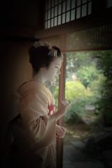 Maiko_20190526_121_4 (Maiko & Geiko) Tags: 20190526 eishoin temple kanohisa kyoto maiko 舞妓 栄摂院 叶久 京都 叶家 kanoya ksumika