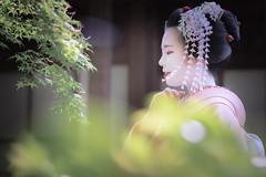 Maiko_20190526_121_13 (Maiko & Geiko) Tags: 20190526 eishoin temple kanohisa kyoto maiko 舞妓 栄摂院 叶久 京都 叶家 kanoya ksumika