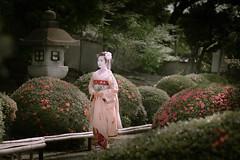 Maiko_20190526_121_28 (Maiko & Geiko) Tags: 20190526 eishoin temple kanohisa kyoto maiko 舞妓 栄摂院 叶久 京都 叶家 kanoya ksumika