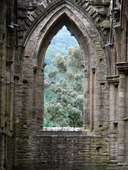 A Gothic arched window with a view of the countryside at Tintern Abbey in Wales (albatz) Tags: frame agothic tree arch window view countryside tintern abbey wales