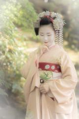 Maiko_20190526_121_27 (Maiko & Geiko) Tags: 20190526 eishoin temple kanohisa kyoto maiko 舞妓 栄摂院 叶久 京都 叶家 kanoya ksumika