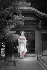 Maiko_20190526_121_20 (Maiko & Geiko) Tags: 20190526 eishoin temple kanohisa kyoto maiko 舞妓 栄摂院 叶久 京都 叶家 kanoya ksumika