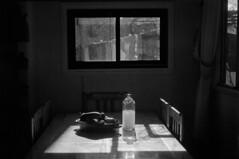 27 (mati.a) Tags: mesa luz ventana cocina 35mm chile bw nikon fm2 nikonfm2 table window ilford hp5 ilfordhp5 light analog