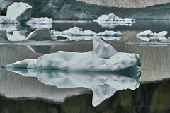 Mini Bergs (Valley Imagery) Tags: icebergs iceberg lake glacier national park montana usa water meltwater hiking tourist sony a99ii 70400gii
