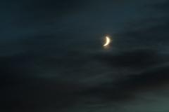 always a moon (12) (birdcloud1) Tags: moon luna crescentmoon crescent dawn sky clouds canoneos80d eos80d canon70300mm 70300mmlens amandakeogh amandakeoghphotography birdcloud1 alwaysamoon earthshine moonlight moonrise