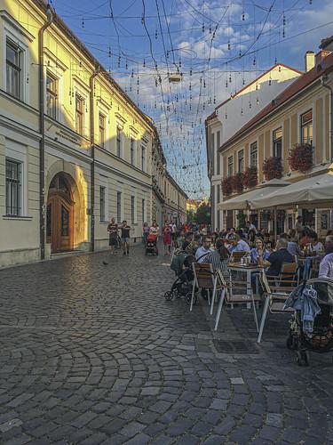 Cluj 54