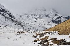 Annapurna South (aashieshanand) Tags: abc annapurnaregion annapurna annapurnasouth annapurnarange adventure landscape pokhara himalayas travel trekking mountain