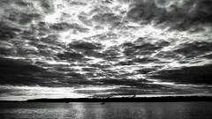 Boating (romeos115) Tags: sky boat bay ocean motor water speed bw fast clouds storm sunset sunrise boating swimming seascape shore maryland motorboat