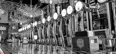 Are you thirsty - 7302 (✵ΨᗩSᗰIᘉᗴ HᗴᘉS✵72 000 000 THXS) Tags: barnabee beer monochrome blackandwhite huaweip30pro huawei bw belgium europa aaa namuroise look photo friends be yasminehens interest eu fr party greatphotographers lanamuroise flickering