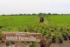 Hobbit Farmville, San Fabian, Pangasinan (joyful JOY) Tags: hobbitsanfabian hobbit farmville philippines pangasinan sanfabian
