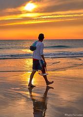 Pescador (pericoterrades) Tags: pesca pescado pescador cadiz saharadelosatunes bajamar playa oceano arena mar deporte atardecer paseos