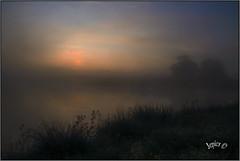 Dawn Mist. (Picture post.) Tags: landscape nature green mist sunrise water reflections reeds trees bluesky eau paysage arbre brume summertime