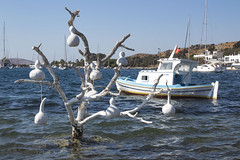 Gourd Tree (caglaryanik) Tags: bodrum muğla turkey sea summer tree boat canon eos1300d